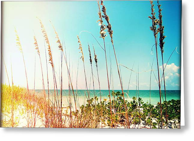 Captiva Greeting Cards - Sanibel Sea Oats Greeting Card by Chris Andruskiewicz