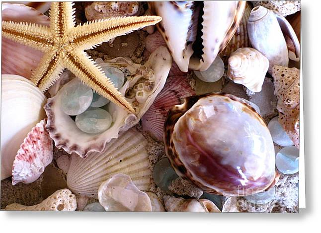 Florida Gulf Coast Greeting Cards - Sanibel Shells Greeting Card by Colleen Kammerer