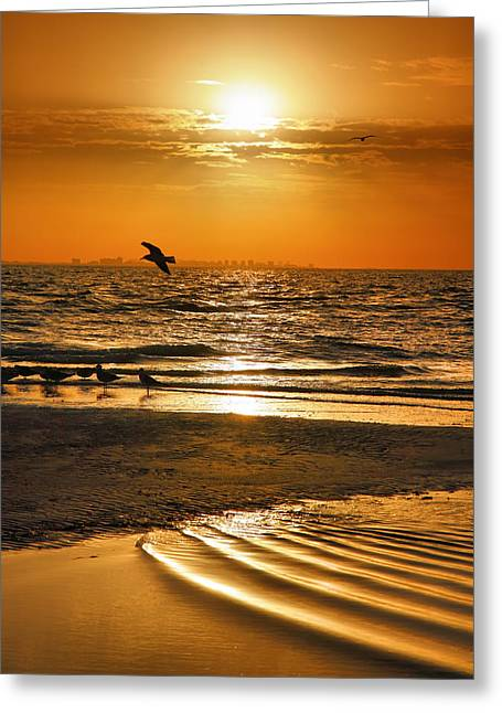 Gold Framed Prints Greeting Cards - Sanibel Sunrise XVI Greeting Card by Steven Ainsworth