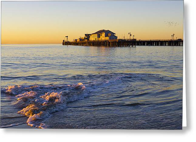 Stearns Wharf Greeting Cards - Santa Barbara Dawn Greeting Card by Priya Ghose