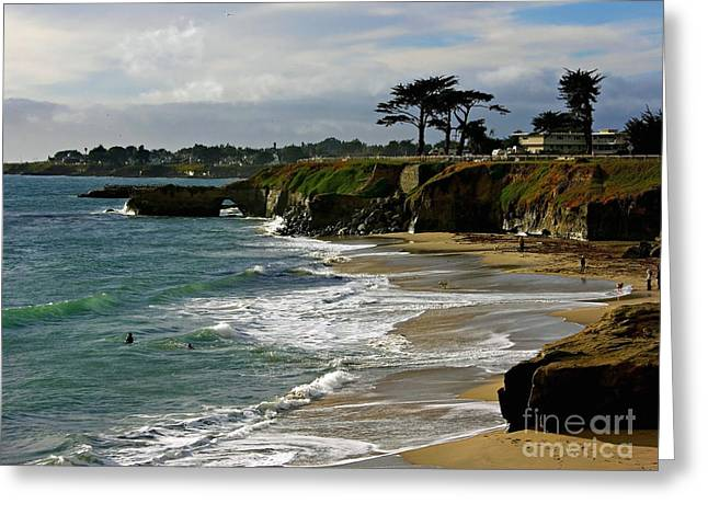 Recently Sold -  - Ocean Landscape Greeting Cards - Santa Cruz Beach Greeting Card by Carol Groenen