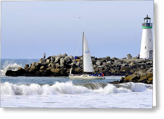 Santa Cruz Sailboat Greeting Cards - Santa Cruz Harbor Greeting Card by AJ  Schibig