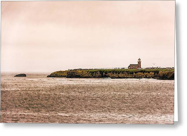 Santa Cruz Art Greeting Cards - Santa Cruz Lighthouse Greeting Card by Jon Woodhams