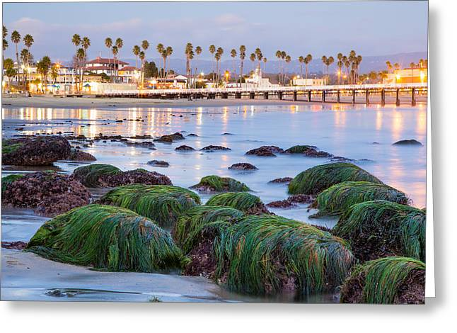 Santa Cruz Wharf Greeting Cards - Santa Cruz Twilight Greeting Card by Adam Pender