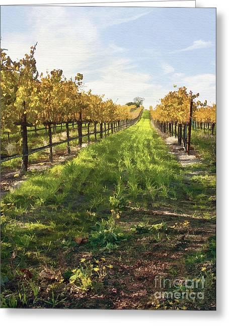 Grape Vines Digital Art Greeting Cards - Santa Maria Vineyard Greeting Card by Sharon Foster