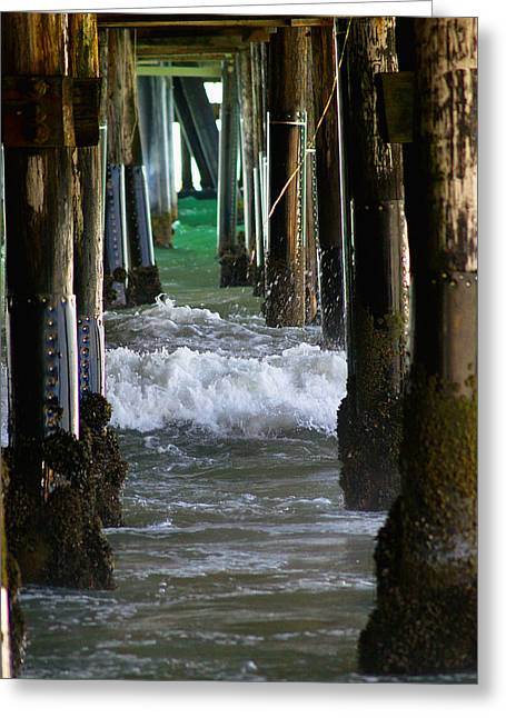 California Ocean Photography Greeting Cards - Santa Monica Pier Greeting Card by Bill Gallagher