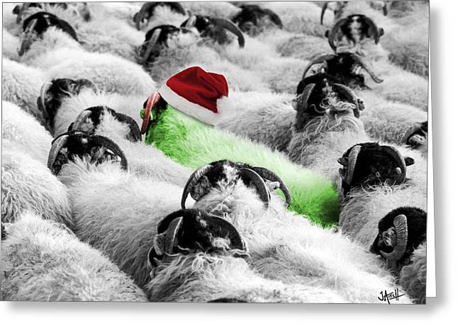 Sheeple Greeting Cards - Santa sheep Greeting Card by Jay Aitch