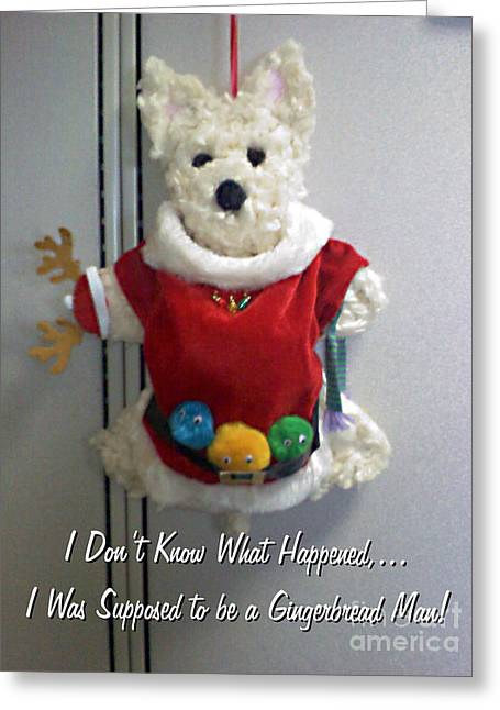 Hanuka Greeting Cards - Santa Westie Greeting Card by Dianne Wendell