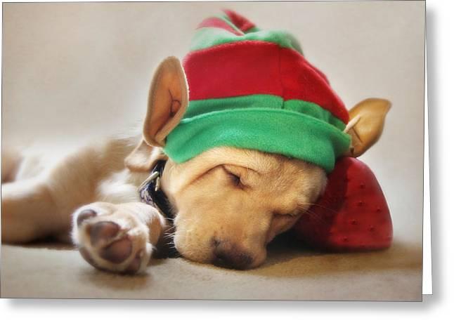 Labrador Retriever Digital Art Greeting Cards - Santas Helper Greeting Card by Lori Deiter