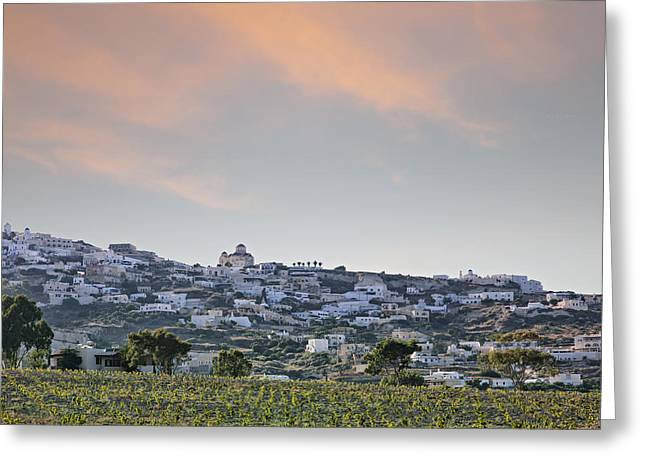 Greece Vineyards Greeting Cards - Santorini vineyard landscape Greeting Card by Sophie McAulay