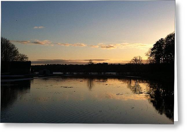 Santuit Pond Dusk Greeting Card by Tricia Nilsson