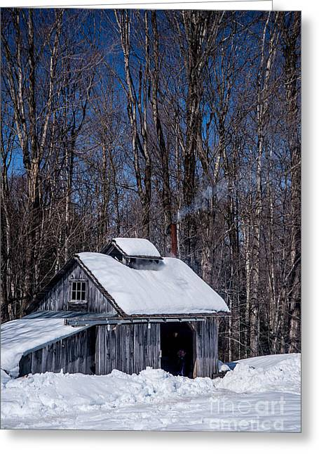 Maine Spring Greeting Cards - Sap House II Greeting Card by Alana Ranney