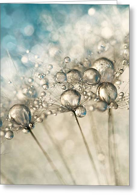Sharon Johnstone Greeting Cards - Sapphire and Silver Sparkle Greeting Card by Sharon Johnstone