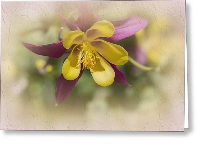 Sarah Greeting Card by Elaine Teague