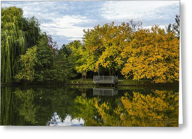 Willow Lake Greeting Cards - Sarahs Grove in Autumn Greeting Card by Karen Casey-Smith