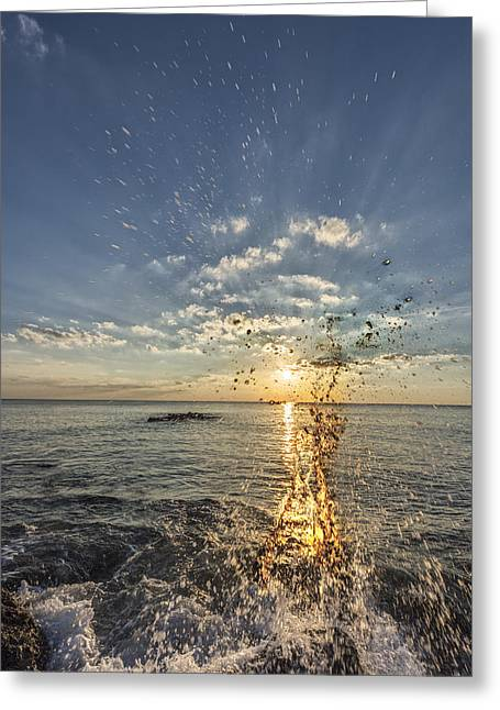 Art Photo Gallery. Greeting Cards - Sarasota Splash Greeting Card by Jon Glaser