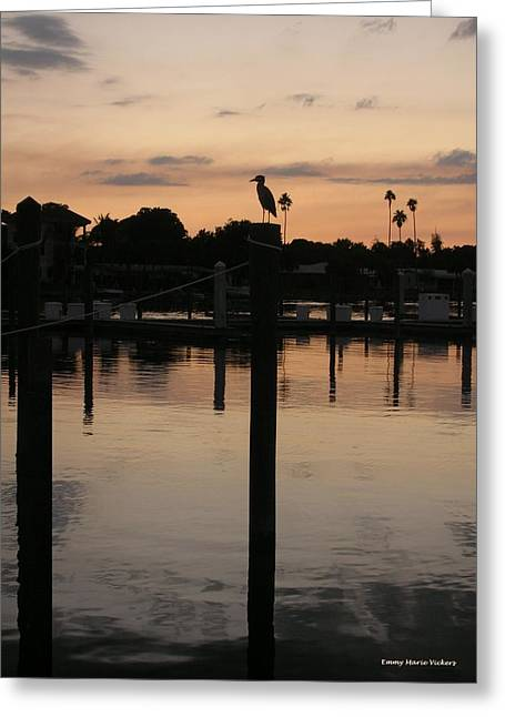 Sunset Framed Prints Greeting Cards - Sarasota Sunset Greeting Card by Emmy Marie Vickers