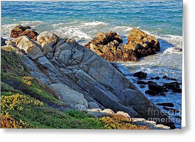 Susan Wiedmann Greeting Cards - Sarcophagus Formation on Seaside Rocks Greeting Card by Susan Wiedmann
