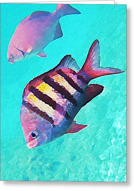 Johnmaloneartist.com Greeting Cards - Sargeant Fish Greeting Card by John Malone