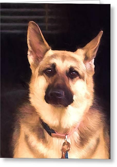 Dogs Digital Greeting Cards - Sasha Greeting Card by Wendy Starita