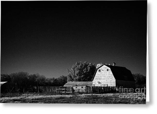 Outbuildings Greeting Cards - Saskatchewan barn on farm in rural Canada Greeting Card by Joe Fox