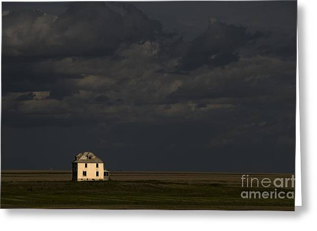 Farmers Field Greeting Cards - Saskatchewan Farmland Greeting Card by Mark Newman