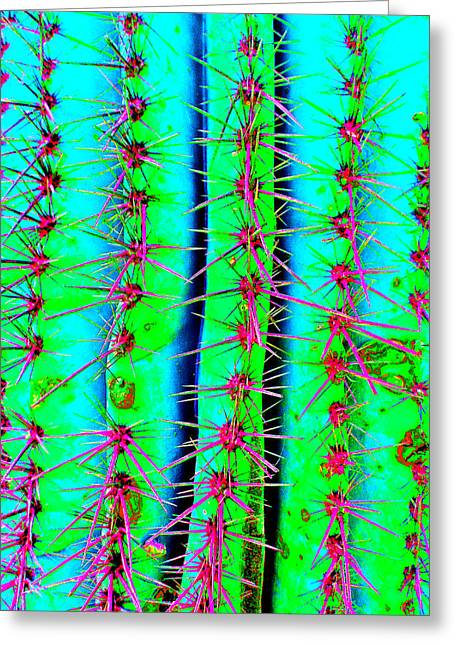 Scottsdale Artist Greeting Cards - Sassy Saguaro II Greeting Card by Michelle Dallocchio