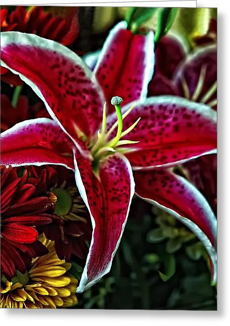 Stargazer Lily Greeting Cards - Sassy Greeting Card by Steve Harrington