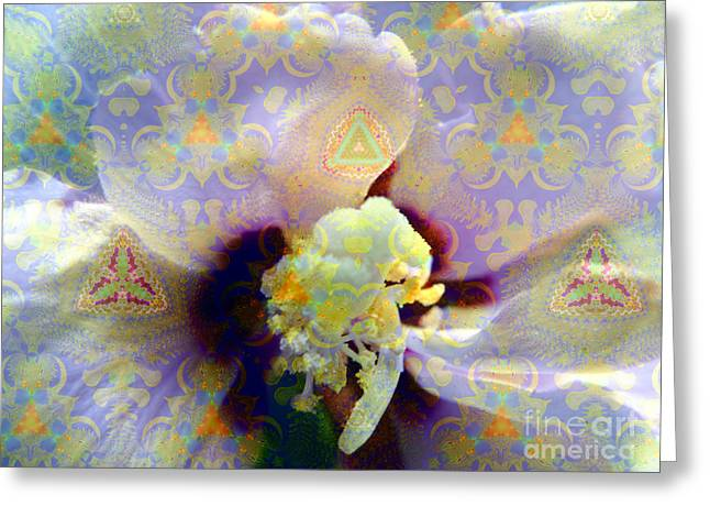 Althea Photographs Greeting Cards - Satin Flower Fractal Kaleidoscope Greeting Card by Renee Trenholm