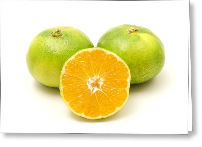 White Background Greeting Cards - Satsuma  Greeting Card by Fabrizio Troiani
