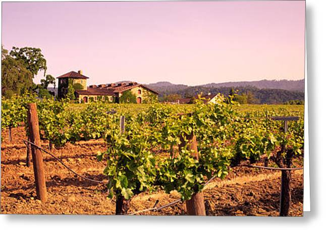 Chateau Greeting Cards - Sattui Winery, Napa Valley, California Greeting Card by Panoramic Images