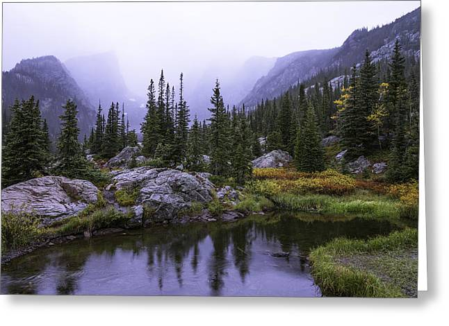 Pond Photographs Greeting Cards - Saturated Forest Greeting Card by Chad Dutson