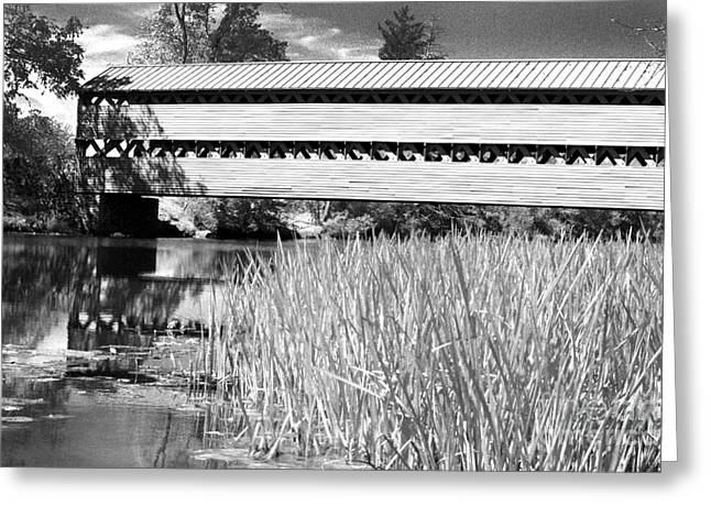 Ir Greeting Cards - Saucks Bridge and Reeds Greeting Card by Paul W Faust -  Impressions of Light
