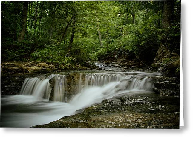 Waterfall Greeting Cards - Saunders Spring Falls Greeting Card by Shane Holsclaw