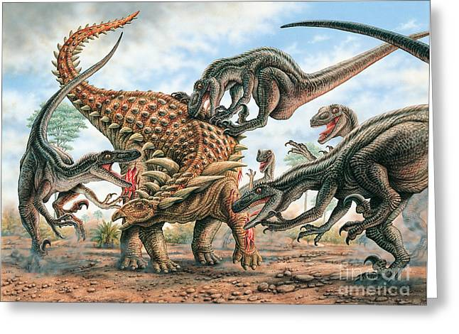 Phil Wilson Greeting Cards - Sauropelta and Utahraptors Greeting Card by Phil Wilson