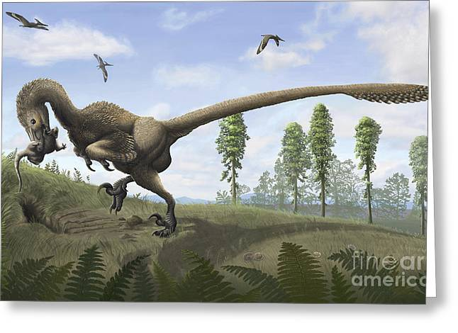 Dromaeosaurid Greeting Cards - Saurornitholestes Seeks Prey In Burrows Greeting Card by Emily Willoughby