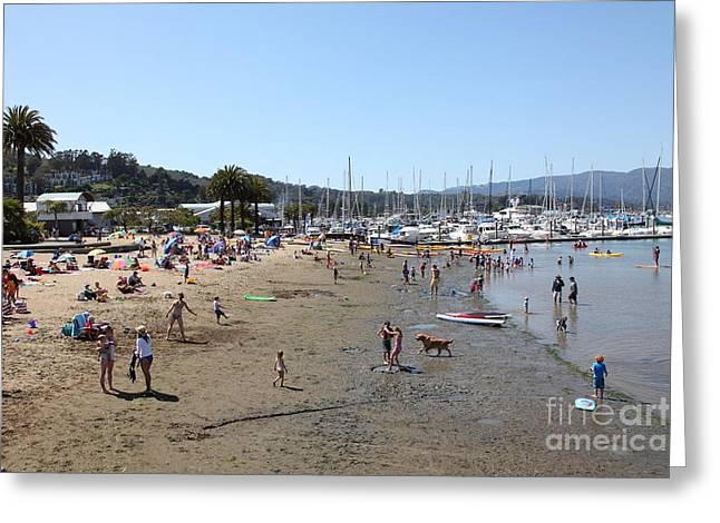 Sailboats In Harbor Photographs Greeting Cards - Sausalito Beach Sausalito California 5D22696 Greeting Card by Wingsdomain Art and Photography