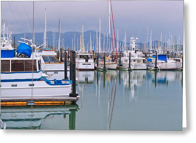 Sailboats In Water Greeting Cards - Sausalito Harbor California Greeting Card by Marianne Campolongo