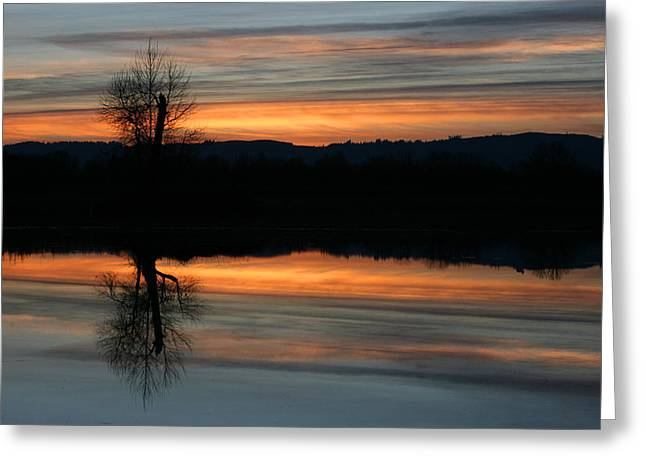 Sauvie Island Greeting Cards - Sauvie Island Greeting Card by Steve Parr