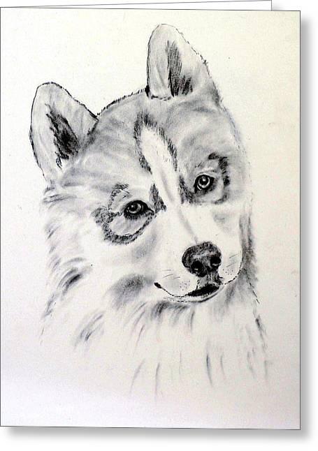 Husky Drawings Greeting Cards - Savannah Greeting Card by Jane Baribeau