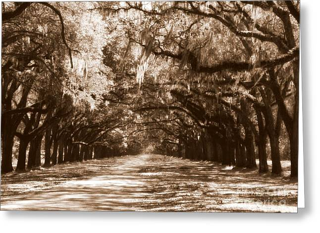 Tan Lines Greeting Cards - Savannah Sepia - The Old South Greeting Card by Carol Groenen