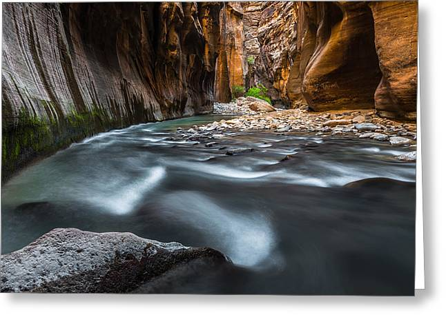Southern Utah Greeting Cards - Saved Greeting Card by Chuck Jason