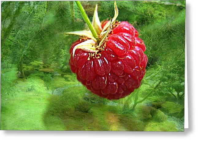 Anti Greeting Cards - The Miracle Berry Greeting Card by Shirley Sirois