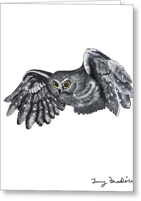 Saw Drawings Greeting Cards - Saw-Whet Owl Greeting Card by Terry Frederick