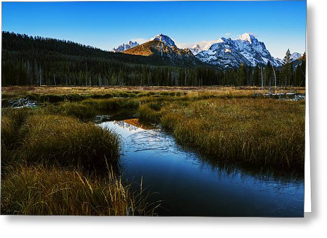Snow-covered Landscape Greeting Cards - Sawtooth mountain cold morning Greeting Card by Vishwanath Bhat