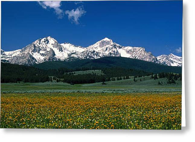 Snow Capped Greeting Cards - Sawtooth Mtns Range Stanley Id Usa Greeting Card by Panoramic Images