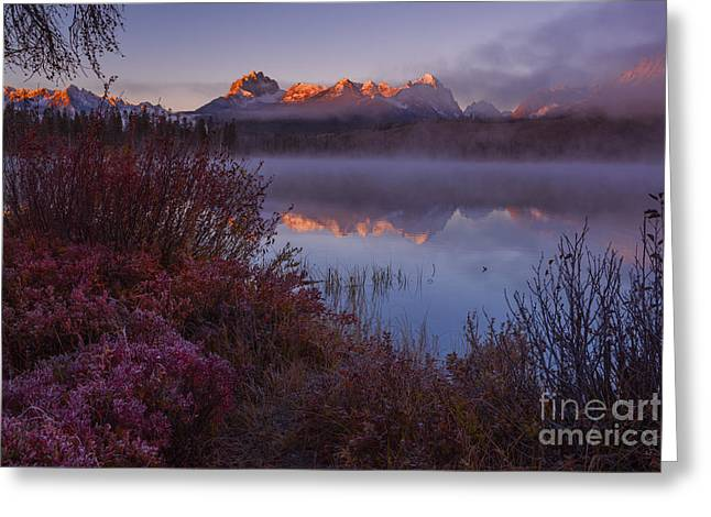 Snow Capped Greeting Cards - Sawtooth sunrise in autumn Greeting Card by Vishwanath Bhat