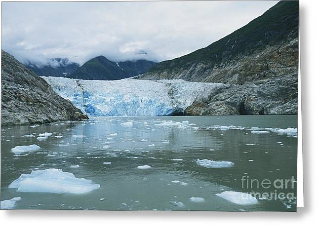 Bergy-bit Greeting Cards - Sawyer Glacier Greeting Card by William H. Mullins
