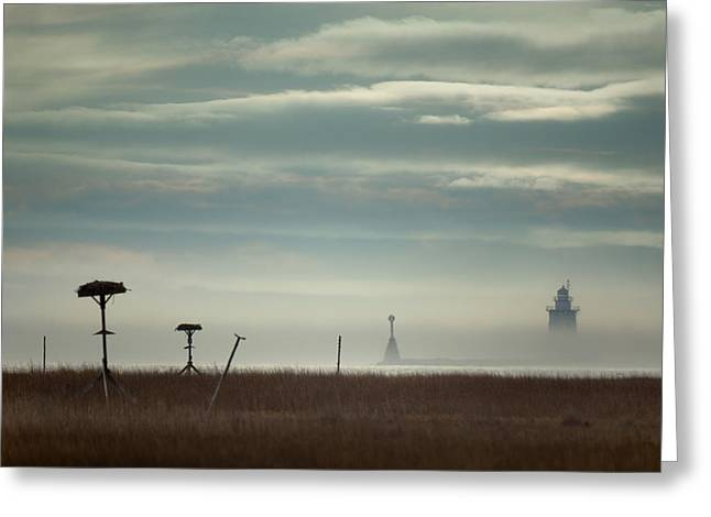 Saybrook Greeting Cards - Saybrook Breakwater Lighthouse II Greeting Card by Jonathan Steele