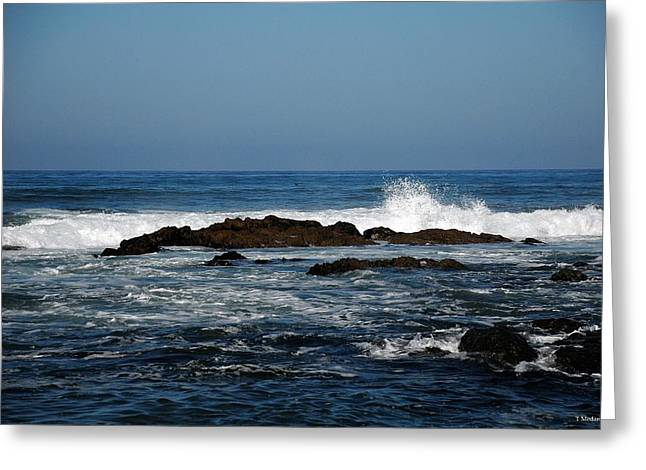 Recently Sold -  - Cambria Greeting Cards - Sc16 Greeting Card by Thomas Medaris